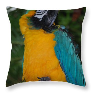 Throw Pillow featuring the photograph Pretty Bird by Ramona Whiteaker