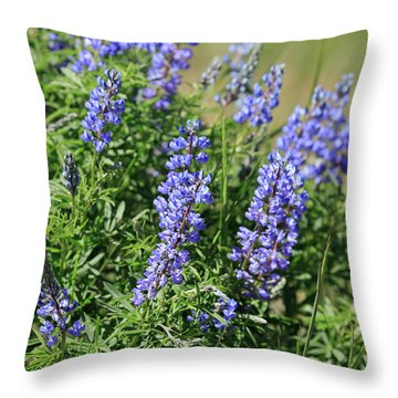 Pretty Blue Flowers Of Silky Lupine Throw Pillow by Louise Heusinkveld
