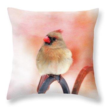Pretty Cardinal Throw Pillow