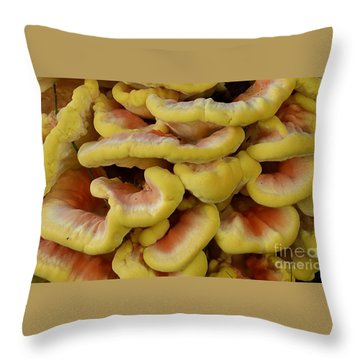 Pretty Chicken Throw Pillow by Randy Bodkins