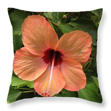 Pretty Flower Found Just Inside Throw Pillow