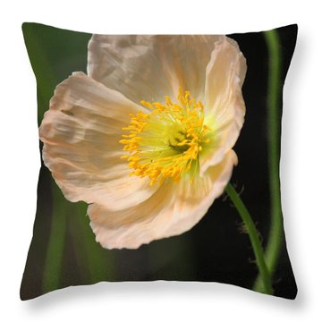 Pretty In Peach Throw Pillow by Suzanne Gaff