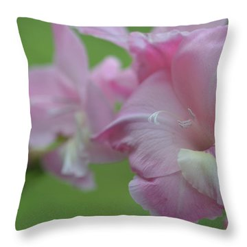 Pretty In Pink 2 Throw Pillow by Teresa Tilley