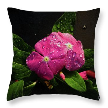 Throw Pillow featuring the photograph Pretty In Pink by Douglas Stucky