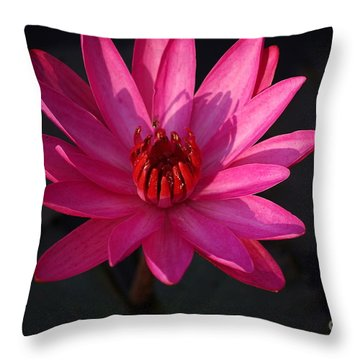 Pretty In Pink Throw Pillow by John S