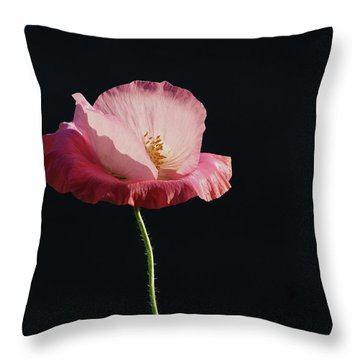 Pretty In Pink Profile  Throw Pillow