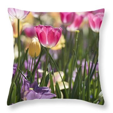 Pretty In Pink Tulips Throw Pillow