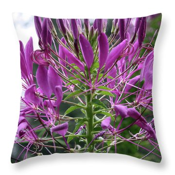 Pretty In Purple Throw Pillow by Ellen Tully