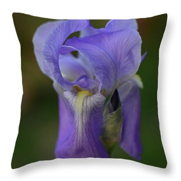 Pretty In Purple Throw Pillow by Teresa Tilley