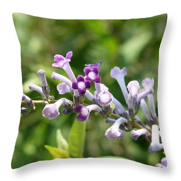 Throw Pillow featuring the photograph Pretty Lavender by Ellen Tully