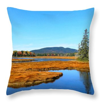 Pretty Marsh Throw Pillow by Mike Breau