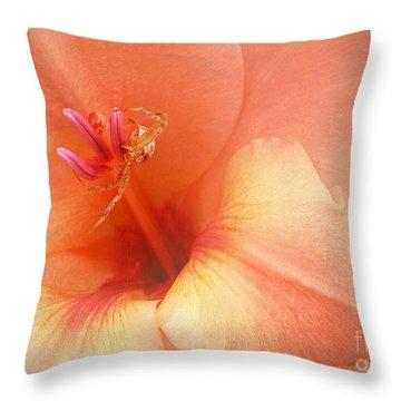 Pretty Orange Petals Throw Pillow by Kathi Mirto