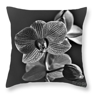 Throw Pillow featuring the photograph Pretty Orchid Bw by Jeremy Hayden
