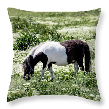 Pretty Painted Pony Throw Pillow by James BO Insogna