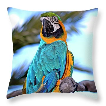 Pretty Parrot Throw Pillow