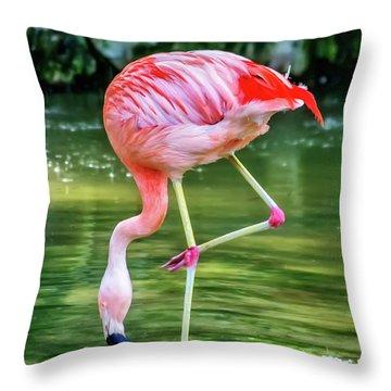 Pretty Pink Flamingo Throw Pillow