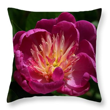 Pretty Pink Peony Flower Throw Pillow