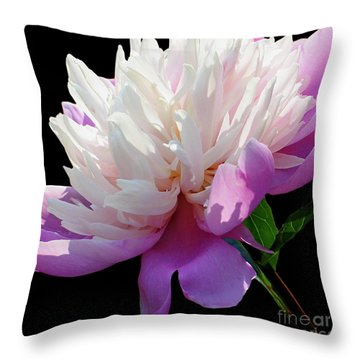 Pretty Pink Peony Flower Wall Art Throw Pillow