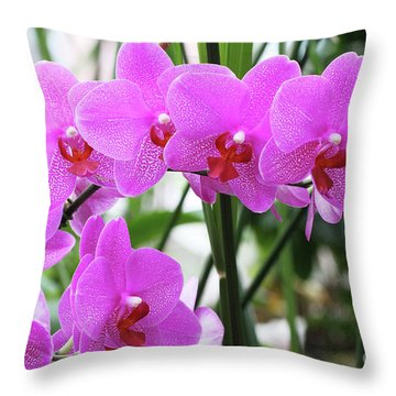 Pretty Pink Phalaenopsis Orchids #2 Throw Pillow