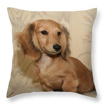Pretty Pup Throw Pillow