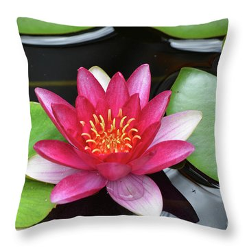 Pretty Red Water Lily Flowering In A Water Garden Throw Pillow