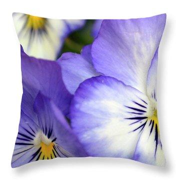 Throw Pillow featuring the photograph Pretty Violas by Ann Bridges