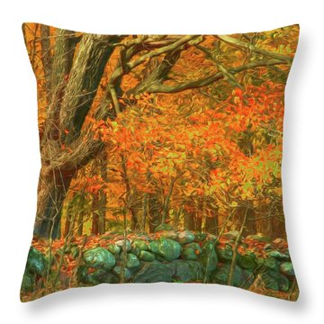 Preuss Road Stone Wall Throw Pillow by Trey Foerster