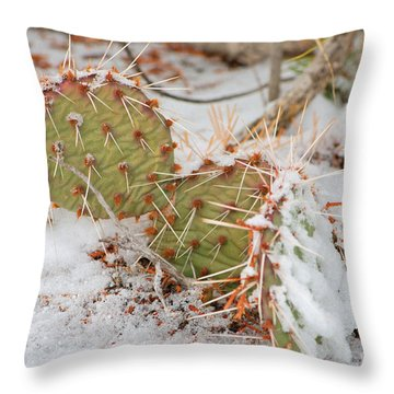 Prickley Pear Cactus Throw Pillow by Donna Greene