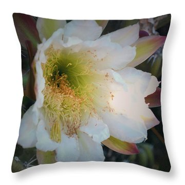 Throw Pillow featuring the photograph Prickley Pear Cactus by Kate Word
