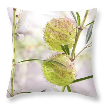 Throw Pillow featuring the photograph Prickly Balls by Deborah  Crew-Johnson