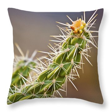 Prickly Branch Throw Pillow