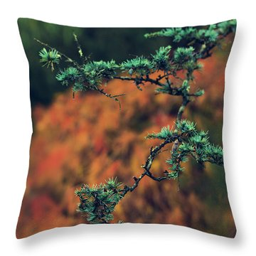 Prickly Green Throw Pillow