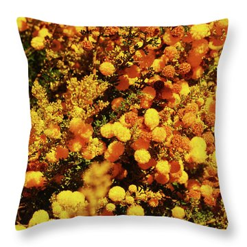 Prickly Moses Throw Pillow