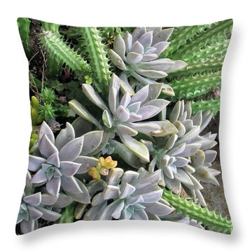 Prickly One Throw Pillow