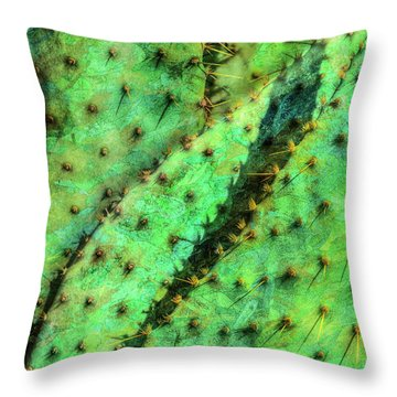Prickly Throw Pillow by Paul Wear