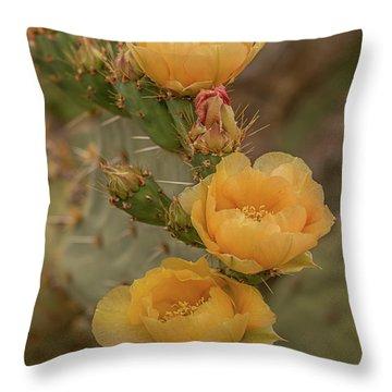 Prickly Pear Blossom Trio Throw Pillow