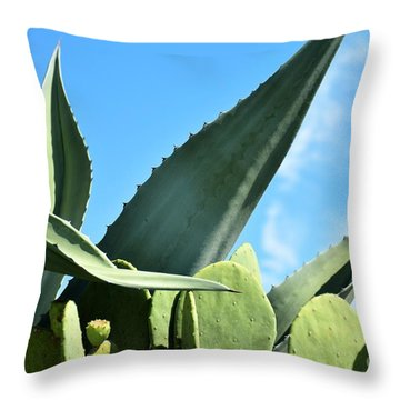 Throw Pillow featuring the photograph Prickly Pear Cactus And Century Plant by Ray Shrewsberry
