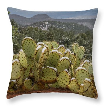 Cactus Country Throw Pillow