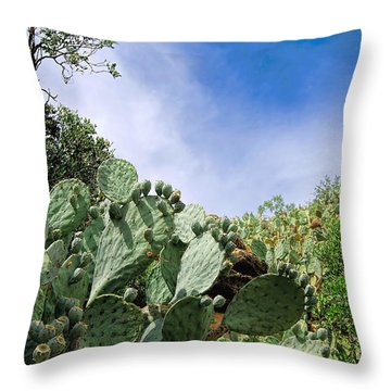 Prickly Pear Hillside Throw Pillow by Gina Savage