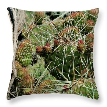 Prickly Pear Revival Throw Pillow