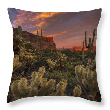 Prickly Pink Peralta Throw Pillow by Peter Coskun
