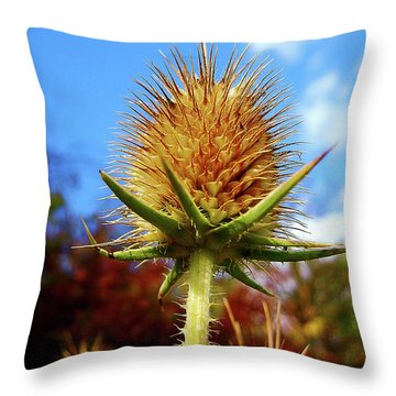 Prickly Thistle Throw Pillow by Nina Ficur Feenan