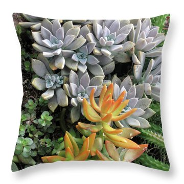 Prickly Two Throw Pillow
