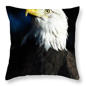 Pride And Power Throw Pillow by Kristal Kraft