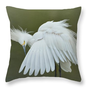 Prim And Preen 3 Throw Pillow