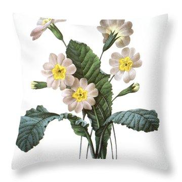 Primrose (primula Aucalis) Throw Pillow by Granger