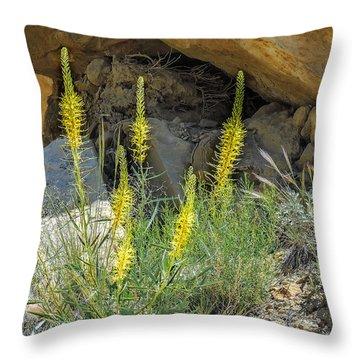 Prince's Plume Throw Pillow
