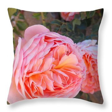 Princess Margret Fragrant Climbing Roses Throw Pillow