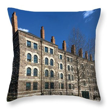 Princeton University Dod Hall Throw Pillow