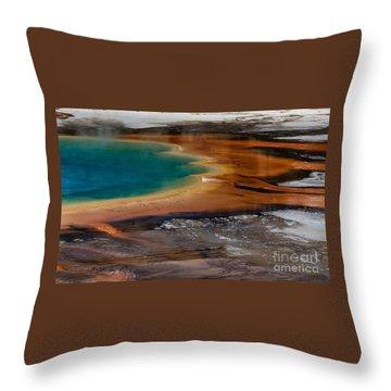 Prismatic Spring Throw Pillow